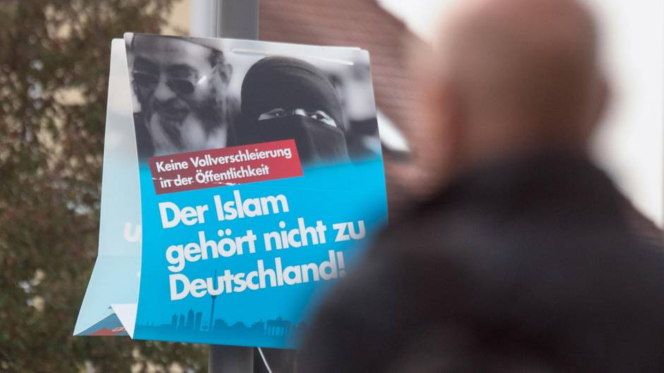 AfD Islam