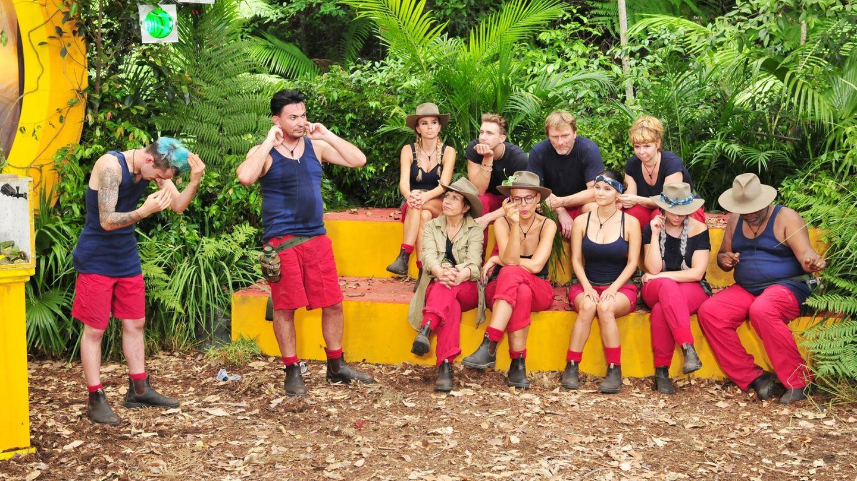 Zum ersten Mal dürfen alle anderen Camper bei einer Dschungelprüfung zusehen