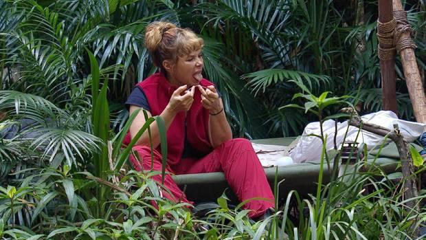 Sandra Steffl kann ihre Zahnpflege nun wieder in einem Badezimmer betreiben statt im Dschungelcamp