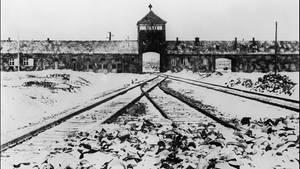Das Vernichtungslager Auschwitz nach der Befreiung durch die Rote Armee