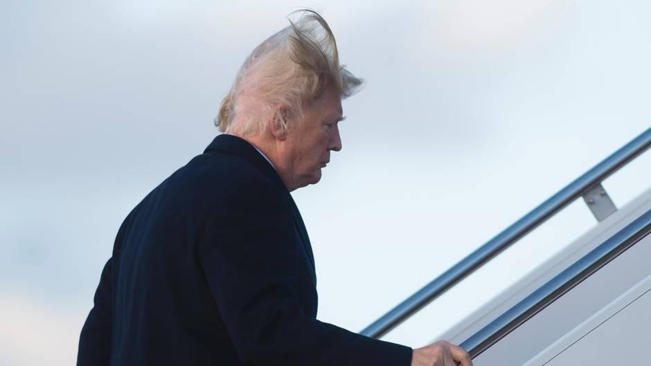 Spott im Netz: Trumps Haare wehen verdächtig kahl - und das Netz dreht durch