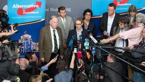 """Von Medien """"ignoriert"""" und mit """"Fake News"""" geschmäht: AfD soll """"Newsroom"""" aufbauen"""