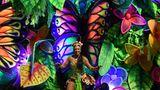 Nicht nur in Rio undSão Paulo, auch in anderen Städten des Landes wie in Salvador da Bahia im Nordosten Brasiliens wird die nächsten Tage über ausgiebig gefeiert.