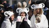 Geschmackssache: Koreanische Fans schauen sich den Snowboard-Slopestyle-Wettbewerb an und tragen das Maskottchen von Pyeongchang, den weißen Tiger Soohorang, auf dem Kopf.