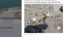 Touristen finden 20 menschliche Skelette am Strand in Argentinien