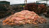 Aus 400.000 Tonnen Recycling-Rohstoffen, darunter auch Kupferabfall aus der Industrie, werden hier jährlich 200.000 Tonnen reiner Kupfer hergestellt.