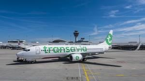 Eine Maschine der Airline Transavia. So eine musste in Wien notlanden.