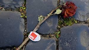 SPD fällt erstmals hinter AfD: Umfrage-Schock für Sozialdemokraten