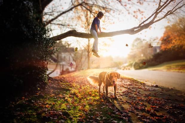 Ein Mädchen sitzt in der untergehenden Sonne auf einem Ast