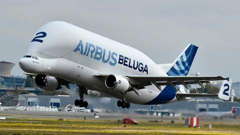 Beluga von Airbus