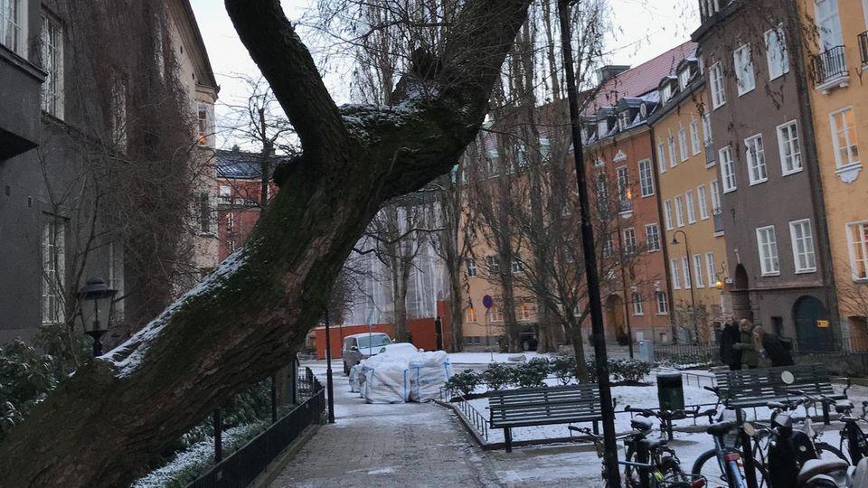 Fans der Millennium-Trilogie von Lisbeth Salander kennen den noblen Stockholmer Stadtteil Östermalm zumindest aus der Literatur. Hier wohnt auch H&M-Chef Karl-Johan Persson.