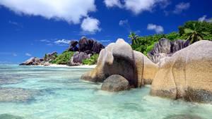 Praslin & La Digue, Seychellen: Traumstrände und anzügliche Pflanzen  Man wird kaum schönere Strände finden als die der Seychellen, mit Felsen gesprenkelt und mit pulverfeinem Sand. Zwischen Mahe, Praslin und La Digue schippern Fähren, sodass man seine Flitterwochen auf mehrere Inseln verteilen kann. Das kleine La Digue ist autofrei, in Praslin gibt es gute Restaurants und das Naturreservat Vallee de Mai, wo man unter Seychellenpalmen schlendern und über die anzügliche Form ihrer Samen kichern kann.