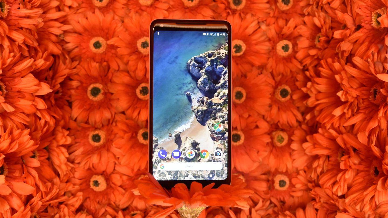 Quartalszahlen: Von der Cash Cow zum Sorgenkind: Samsung hat ein Smartphone-Problem