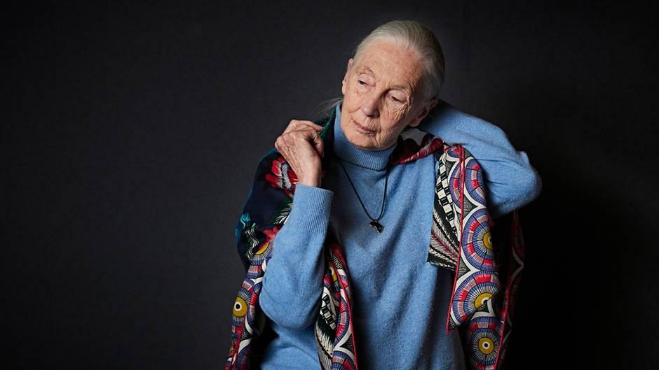 Dr. v. Hirschhausens stern Gesund Leben: Hirschhausen trifft die berühmte Affenforscherin Jane Goodall: Das unterscheidet Mensch und Tier