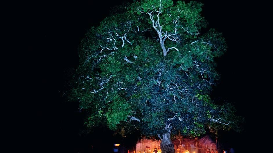Dunkles Afrika: Noch immer leben 600 Millionen Menschen ohne Licht