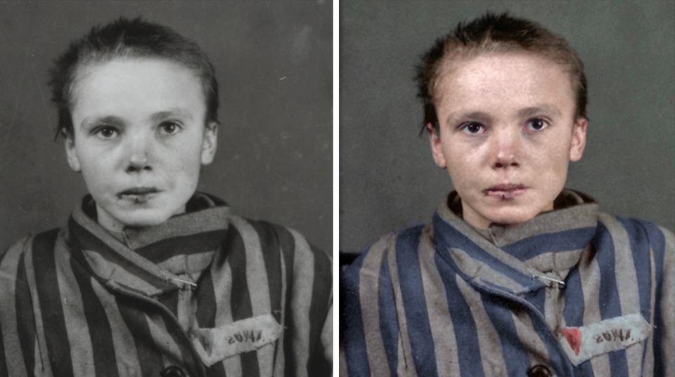 Auschwitz Teaser