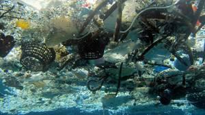 Pazifik - Plastik - Müll - Deutschland