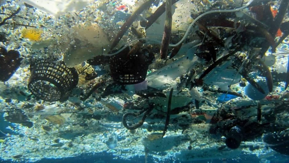 Studie: Plastikstrudel im Pazifik viermal so groß wie Deutschland