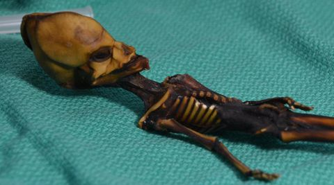Mini-Mumie aus Chile