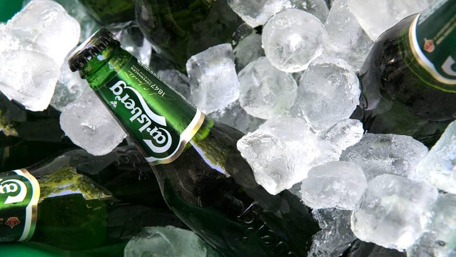 Platz 10: Carlsberg-Gruppe  Absatz in Deutschland 2017: 2,4 Millionen Hektoliter  Die Carlsberg-Gruppe mit Sitz in Kopenhagen ist der viertgrößte Brauereikonzern der Welt. In Deutschland ist sie unter andeem durch die Marken Lübzer, Astra, Duckstein und Holsten vertreten.