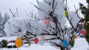 Osterwetter: Im Norden Deutschlands könnte die Dekoration im Laufe der Woche von weißen Flocken verdeckt werden