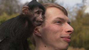 Affenmädchen Maggie begleitet Michael Geyer (25) überall mit hin, meistens sitzt sie auf seiner Schulter oder auf seinem Kopf.