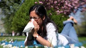 Eine Frau in Jeans und weißer Bluse liegt bäuchlings auf einer Wiese mit Gänseblümchen und schnäuzt sich
