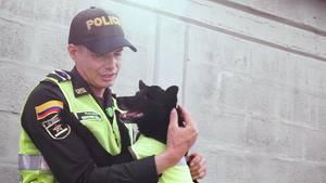 Kolumbien Polizeihund Straßenhund Polizist