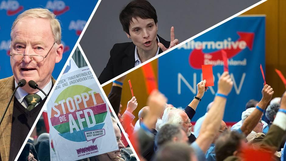 AfD-Chronologie: Fünf Jahre AfD - eine Erfolgsgeschichte?