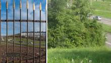 Natur-Kunstwerk Sanctuarium in Stuttgart irrtümlich abrasiert