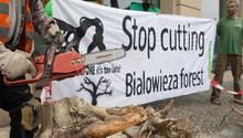 """""""Hört auf, den Bialowieza-Urwald abzuholzen"""", steht auf dem Plakat. Gegen die Baumfällungen gibt es immer wieder Proteste."""