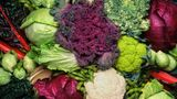 Gemüse: Kohl  Gemüse aus Bioproduktion ist laut Monitoring tatsächlich weniger belastet als konventionelle Ware. Einheimische Produkte werden seltener beanstandet als ausländische, vor allem außereuropäische. Wer also auf Nummer sicher gehen möchte, kauft regionale Bioware.  Das setzt voraus, dass Sie – soweit wie möglich – Gemüse der Saison bevorzugen. Denn zum optimalen Reifezeitpunkt ist auch der Gehalt an wertvollen Substanzen am höchsten.