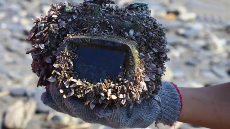 Ungewöhnliches Strandgut: Frau verliert Kamera beim Tauchen in Japan - drei Jahre später taucht sie in einem anderen Land auf