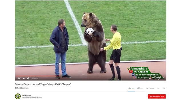 Bär mit Ball in der Hand zwischen Tiertrainer und Schiedsrichter