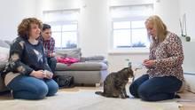 Die Katzenhalter lassen sich von der Therapeutin eine Übung mit Kater Louis erklären.