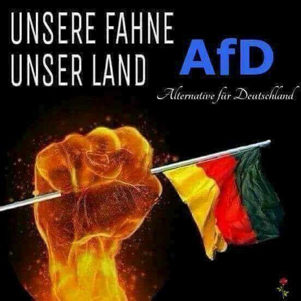 """30. 3. 2018, 11.24 Uhr: ein AfD-Plakat, selbst gebastelt, ohne Parteilogo, dafür mit Riesenfaust-Ästhetik. Der Ton passt aber. Zuletzt forderte die Partei: """"Hol dir dein Land zurück!"""""""