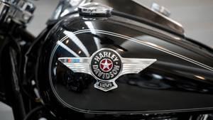 Harley Davidson sucht Praktikanten