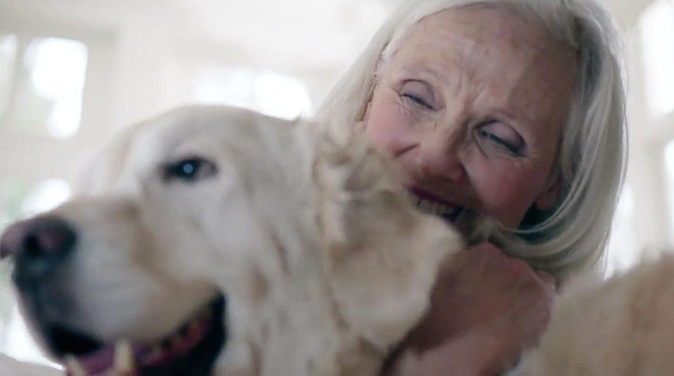 Selbstversuch: Hunde-Panik: Wie ich versuchte, meine Angst zu besiegen