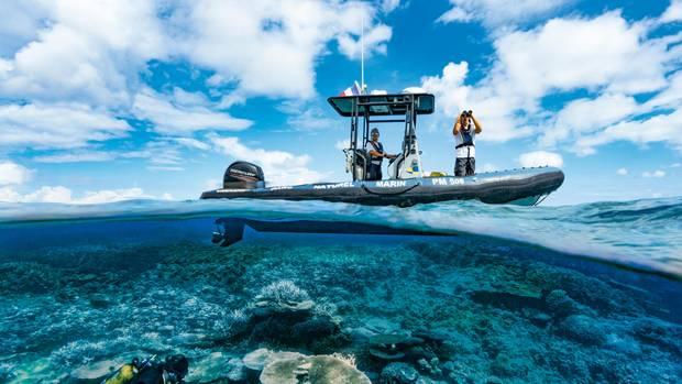 Ranger im marinen Naturpark der zu Frankreich gehörenden Mayotte-Inseln im Indischen Ozean überwachen den Zustand der dortigen Korallen