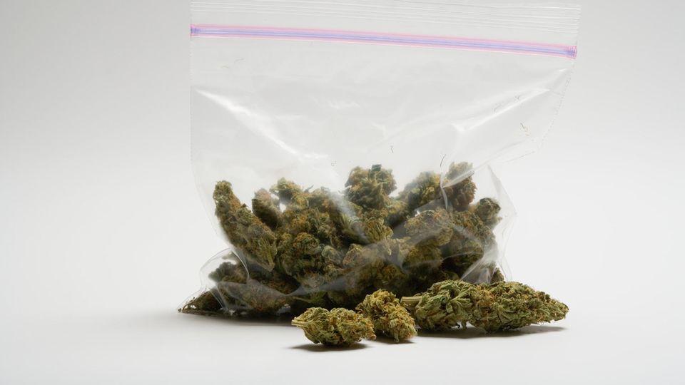 Cannabis – Berichte von spektakulären Behandlungserfolgen