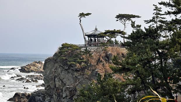 Auf Felsen in der Brandung und die Kiefern: Tempel Naksansa an der Ostküste.