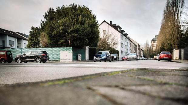 Die Eibe steht in einer guten Wohngegend von Mönchengladbach. Der Junge war in dem immergrünen Baum kaum zu sehen