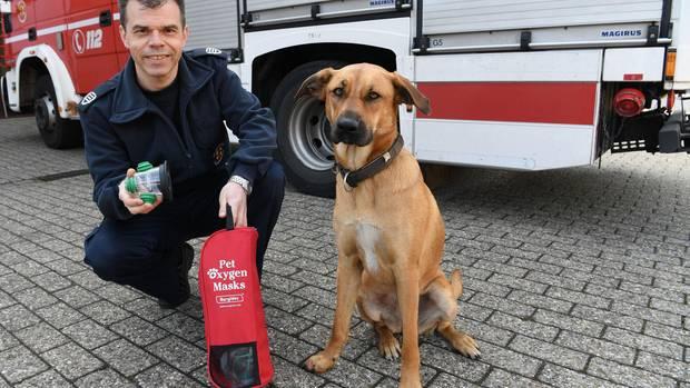 Ein Mitarbeiter der Feuerwehr Delmenhorst mit Hündin Dora. Er zeigt eine Beatmungsmaske für Tiere.