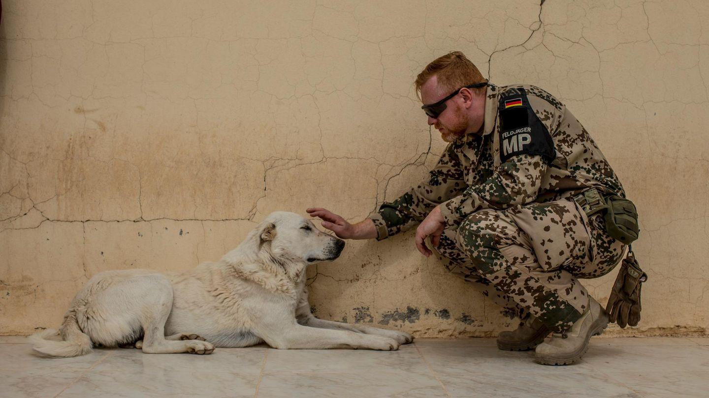 Ein Bundeswehrsoldat streichelt einen Hund