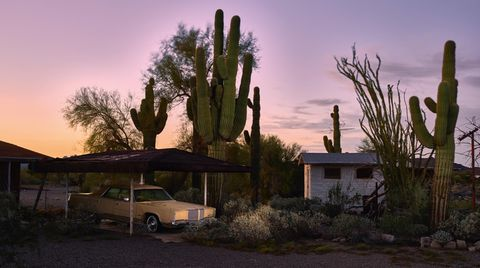 Abgestellt in der kalifornischen Wüste zwischen Kakteen, aber geschützt unter dem Dach eines Carports hat einer diesen Lincoln Continental aus dem Jahre 1969 eingeparkt.
