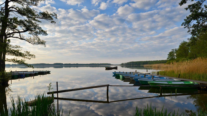 Groß Schauener See - Im brandenburgischen Kanada  Am Steg dümpelt ein Ruderboot, der Wind kräuselt Wellen über den Groß Schauener Sees. Die Sonne steht tief, man sitzt unter einer Waldkiefer, isst ein Stück geräucherten Aal aus der örtlichen Fischerei, fühlt sich wie in Kanada – aber nicht 50 Kilometer entfernt von Berlin-Mitte. Die Naturlandschaft Groß Schauener Seen hat der verstorbene Tierfilmer Heinz Sielmann geschaffen, Fischotter und Fischadler sollten eine Heimat finden, Kraniche und Kormorane auch. Wer länger als einen Tag im brandenburgischen Kanada verweilen will, mietet sich einfach in der Fischerei ein. Die Hauptstadt ist Lichtjahre entfernt.  www.koellnitz.de