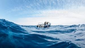 Offener Ozean. Dunkelblaue Tiefe. Wellen. Im Wasser kreisen mehrere Haie.