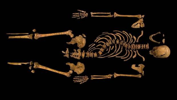 Ein unvollständiges Skelett liegt auf schwarzem Untergrund. Archäologen haben es als das von Richard III. identifiziert