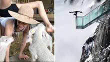 Eine Kombo zeigt links eine Frau mit Schlapphut beim Handstand zwischen Lämmern in einem Stall und rechts auf einem Geländer
