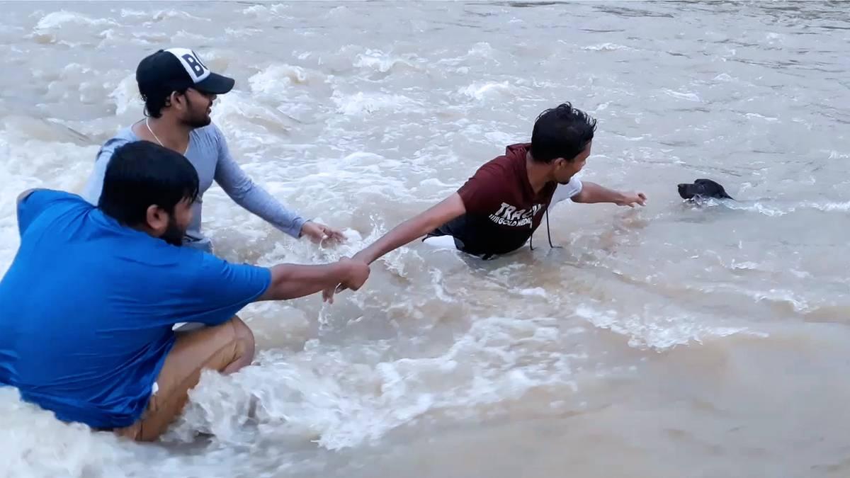 Sturzflut-in-Sri-Lanka-Hund-kurz-vor-dem-Ertrinken-M-nner-schreiten-beherzt-ein